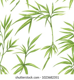 Seamless pattern, background with bamboo  on white background. Hand drawn colorful vector illustration without transparent and gradients.