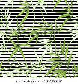 Seamless pattern, background with bamboo  on  b&w stripes  background. Hand drawn colorful vector illustration without transparent and gradients.