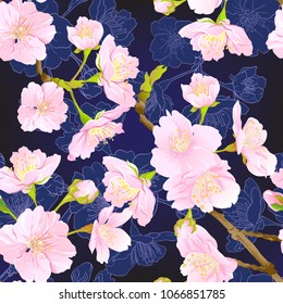 Seamless pattern, background with blooming cherry japanese sakura in soft rose pink colors. Stock vectorillustration. Isolated on dark blue background. Colored and outline pattern.