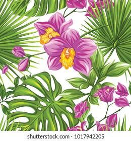 Seamless pattern, background with bougainvillea,  orchid, palm and monstera on white background. Hand drawn colorful vector illustration without transparent and gradients.