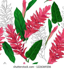 seamless pattern background of hand drawn alpinia purpurata exotic red ginger flower and geraldton wax australia native plant on white background