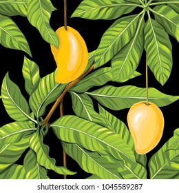 Seamless pattern, background with mango on black background.  Hand drawn colorful vector illustration without transparent and gradients.