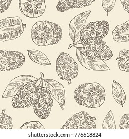 Seamless pattern with background with morinda, noni fruit: branch with noni fruit. Super food. Vector hand drawn illustration