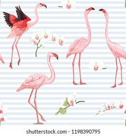 Seamless pattern, background with tropical birds. flamingo and orchid flower. Colored vector illustration. On blue and white stripes background.