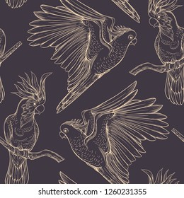 Seamless pattern, background with tropical birds. White heron,cockatoo parrot. Vector illustration. Graphic drawing, engraving style. vector illustration.