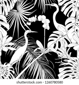 Seamless pattern, background. with tropical plants and flowers with white orchid and tropical birds.  Black-and-white graphics. Vector illustration.