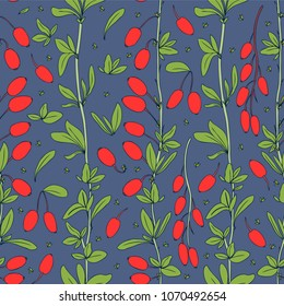 Seamless pattern, Barberry hand drawn branch vector isolated on blue background, colorful berry, Natural spicy herb, cooking ingredient for design package tea, cosmetic, medicine, fabric, textile