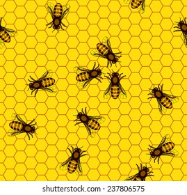 Seamless pattern of the bee on honeycombs background