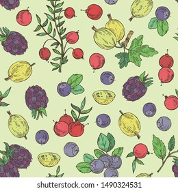 Seamless pattern with berries: bilberry, cranberry, blackberry and gooseberry. Vector hand drawn illustration.