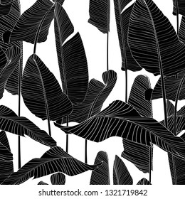 Seamless pattern with black line bananas leaves on white background.