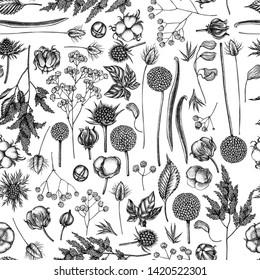 Seamless pattern with black and white astilbe, craspedia, blue eryngo, lagurus, cotton, gypsophila