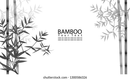 Seamless pattern in black and white of the bamboo stalks, Vector illustration of bamboo, design of Chinese and Japanese trees,  Monochrome trees wallpaper for cards and web.