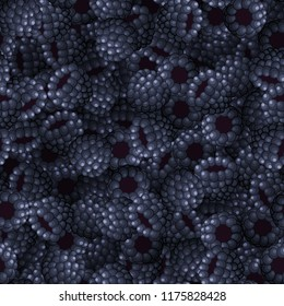 Seamless pattern from blackberries closeup. Background. Vector illustration