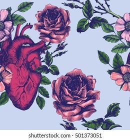 Imágenes Fotos De Stock Y Vectores Sobre Human Heart