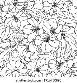 Seamless pattern of Blooming apple tree. Linear vector background