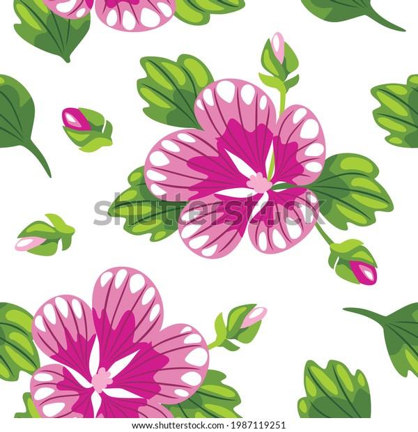 seamless-pattern-blooming-mallow-drawing
