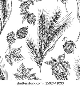 Seamless pattern botany hand drawn sketch Ears of wheat sheaf and hop isolated on white background. Engraving style. Herbal frame. Natural food collection Vector illustrations