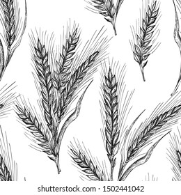 Seamless pattern botany hand drawn sketch Ears of wheat sheaf isolated on white background. Engraving style. Herbal frame. Natural food collection