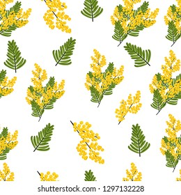 Seamless pattern with branches and leaves of Mimosa on white background. Spring yellow flowers. Vector illustration.