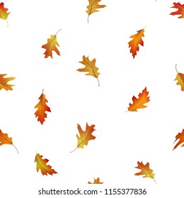 Seamless pattern of bright and colorful autumn leaves. Falling oak tree leaf vector illustration