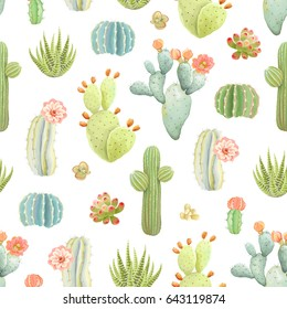Seamless pattern with cactus and succulents, vector illustration in vintage style on white background.