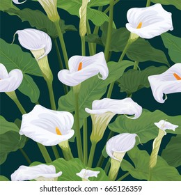 Seamless pattern of calla lily flowers with leaves on dark green background. Vector set of blooming flower for your design. Adornment for wedding invitations and greeting card.