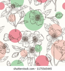 Seamless pattern with camellia sasanqua: leaves, camellia sasanqua flowers and bud. Cosmetic, perfumery and medical plant. Vector hand drawn illustration