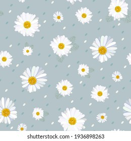 Seamless pattern with camomile flowers.Vector illustration.