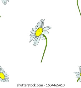 Seamless pattern of camomiles. Vector cartoon background. Flat design.