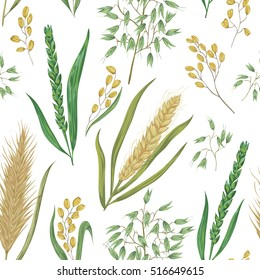 Seamless pattern with cereals. Barley, wheat, rye, rice and oat. Collection decorative floral design elements. Isolated elements. Vintage vector illustration in watercolor style.
