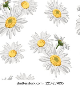 Seamless pattern with chamomile (camomile) flowers on white background.