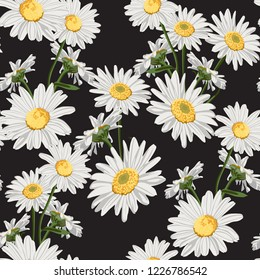 Seamless pattern with chamomile (camomile) flowers on black background.