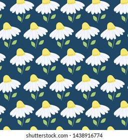 Seamless pattern chamomile. camomile, leaves, field chamomile, contours of flowers.