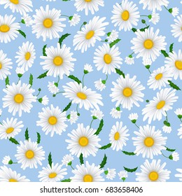 Seamless pattern with chamomile  flowers on a blue background.