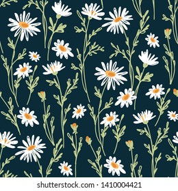 Seamless pattern with chamomiles. Hand-drawn vector illustration.