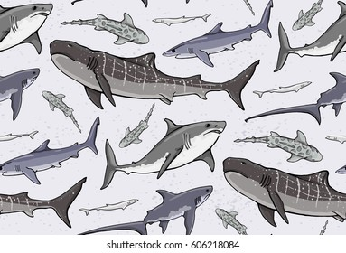 seamless pattern with colored sharks on colored background. tiger, blue, fox, leopard sharks