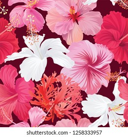 Seamless pattern of colorful hibiscus flowers background. Vector set of exotic tropical garden for holiday invitations, greeting card and fashion design.