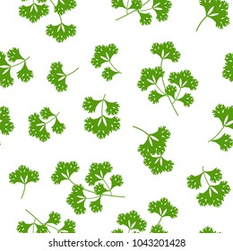 seamless pattern coriander herb, food vector illustration on white background