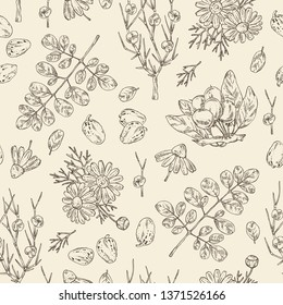Seamless pattern with cosmetics and medical plant: moringa, shea nut, camomile and ephedra. Vector hand drawn illustration.
