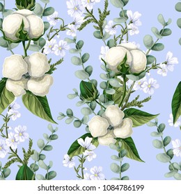 Seamless pattern with  cotton flowers, eucalyptus branches on a blue background. Vector illustration