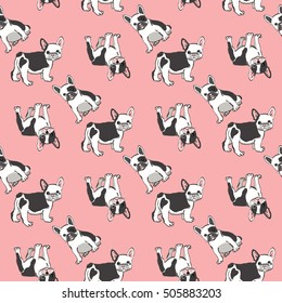 Seamless pattern with cute french bulldog on pink background. Vector illustration.