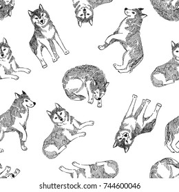 Seamless pattern with cute husky. Vector animal background. Monochrome print design with dogs.