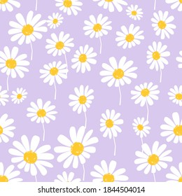 Seamless pattern with daisy flower on purple background vector illustration.