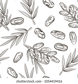 Seamless pattern with date fruit branch, date fruits and palm leaves. Vector hand drawn sketchy style illustration. Lined drawing isolated on white. Pattern in swatch