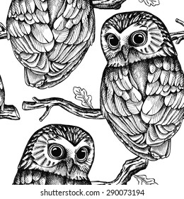 Seamless pattern depicting owls on oak branches. Vector black and white illustration.