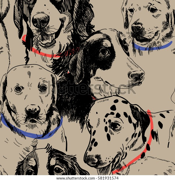 Seamless pattern with dogs. Dog breeds. Labrador Retriever, zinenhund. Drawing by hand in vintage style.
