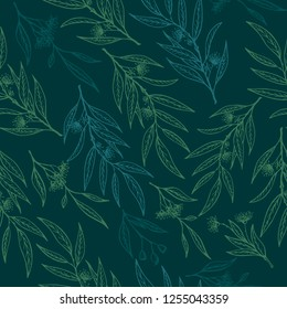 Seamless pattern with eucalyptus flowers.Vector eucalyptus hand drawn illustration.Healing and cosmetics herb.Medical plant.Great design for natural and organic products.