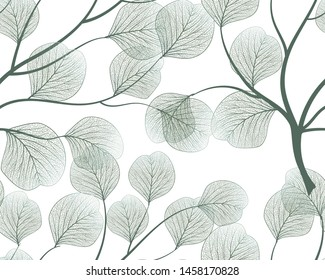 Seamless pattern with eucalyptus leaves.Vector illustration.