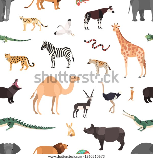 Seamless Pattern Exotic Animals On White Stock Vector (Royalty ...