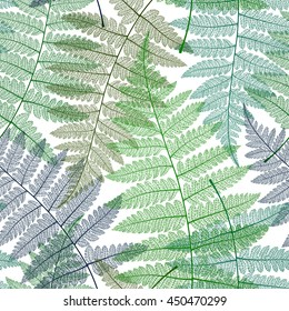Seamless pattern with fern leaves. Botanical background. Vector colorful illustration.